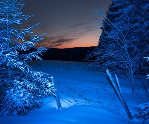 blue and winter image
