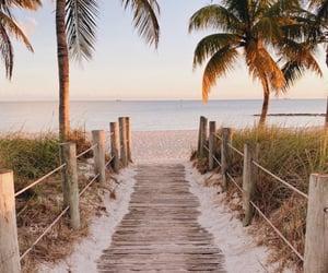 beach, ocean, and path image