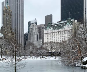 aesthetics, Central Park, and christmas image