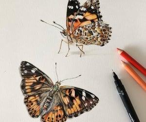 Animales, arte, and belleza image