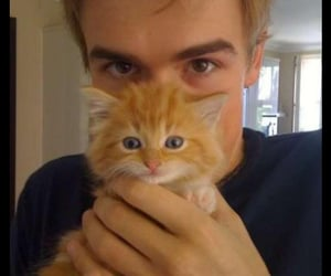 tom fletcher, McFly, and cat image