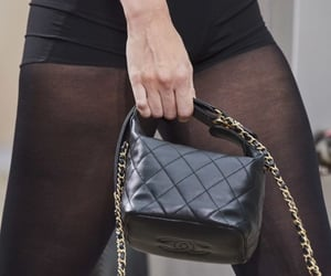 bags, fashion victim, and brands image