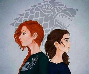 beautiful, stark, and wolf image