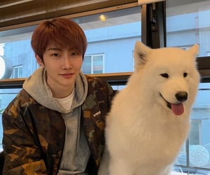 k-pop, hoyoung, and verivery image
