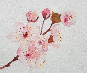 art, beautiful, and blossom image