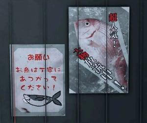 fish, gray, and japan image