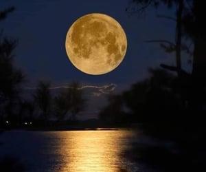 naturaleza and lunas image