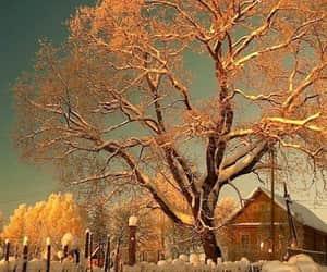 exteriores, invierno, and paisajes image