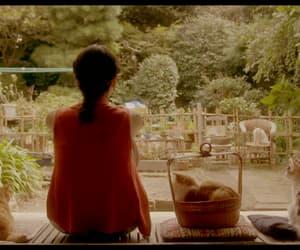 movie, mikako ichikawa, and rentaneko image