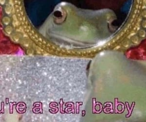 frog, aesthetic, and cute image