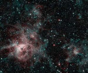 nebula, space, and tarantula image
