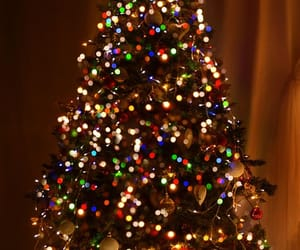 Wallpapers tree, christmas tree, christmas, new years day, tradition