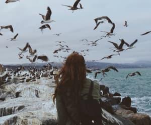 girl, bird, and sea image