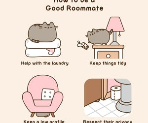 roommate, pusheen, and cute image