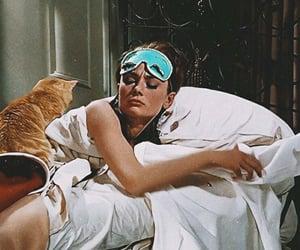 audrey hepburn and cat image