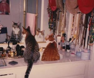 cats, necklace, and cup image