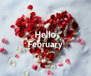 february, rose, and heart image
