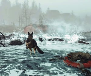 fallout, fog, and mist image