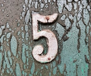 five, NUMBER 5, and photography image