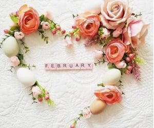 2, february, and flowers image
