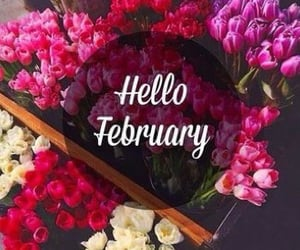 february, flowers, and month image