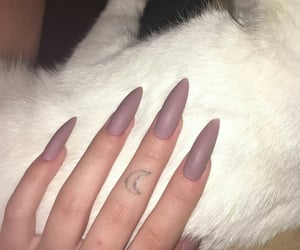 beauty, cat, and nails image