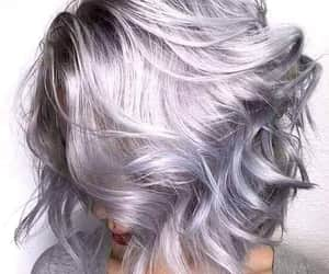 cheveux, court, and gris image