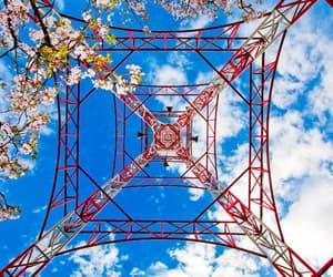 blue, gittersteigen, and lattice climbing image