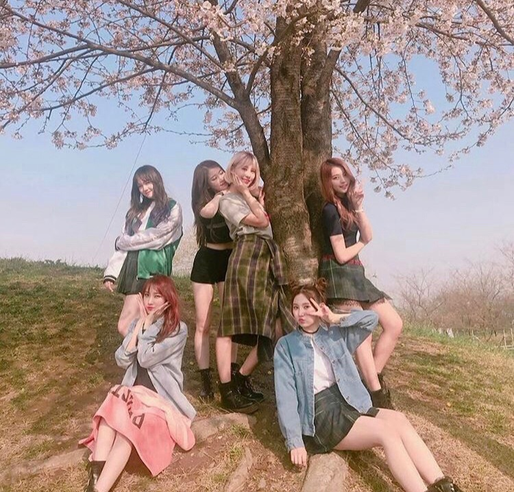 article, girl group, and kpop image