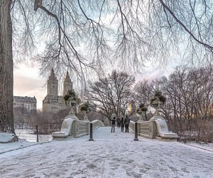 Central Park, christmas, and december image