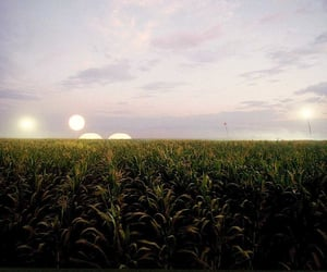 aesthetic, aliens, and field image