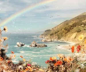 rainbow and flowers image