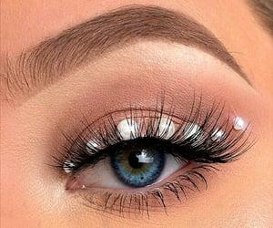 blue eye, eye, and eyebrow image