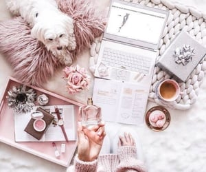 pink, theme, and rose gold image