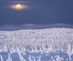 belleza, frío, and invierno image