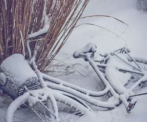 bicycle and snow image