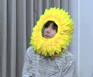 flower, funny, and kim image
