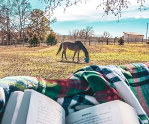 books, country, and countryside image
