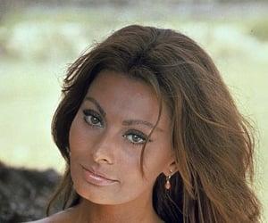 1960s, sophia loren, and 60s image