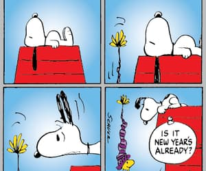 funny, snoopy, and peanuts image