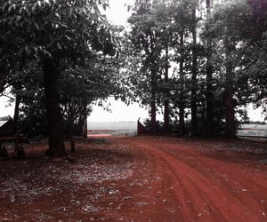 country life, country side, and dark image