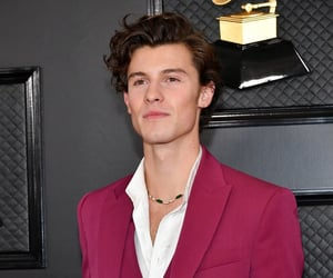 shawn mendes and grammy image