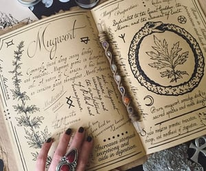 book, witch, and magic image