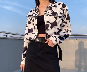 aesthetic, cow, and fashion image