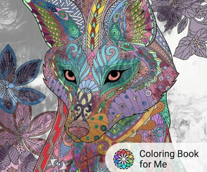 draw, wolf, and coloring book for me image