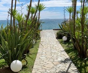 Corsica and holidays image