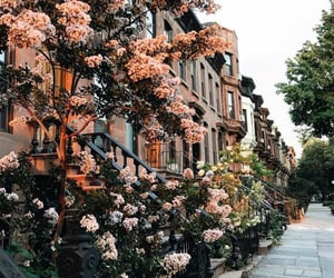 city, travel, and flowers image