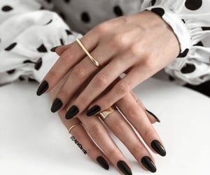 aesthetic, claws, and inspiration image