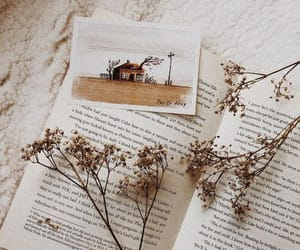 book, bookworm, and decor image