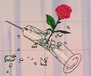anime, aesthetic, and rose image